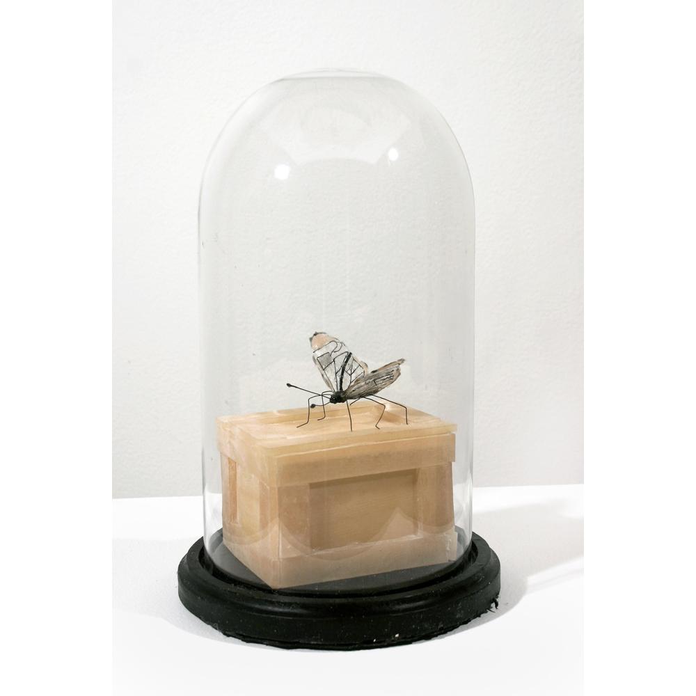 After Ruskin\'s Bell Jar 2009