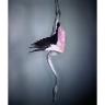 Flamingo II 2012