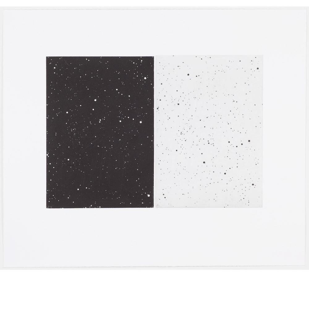 Black and White Diptych 2010
