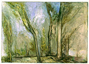 Trees in Old Quarry 1998