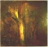 Dead Oak in Treaseas Wood 2001