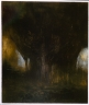 Dusk Cedar Grove 2001
