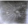 Web #2 2000-01