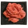 O Rose 2009