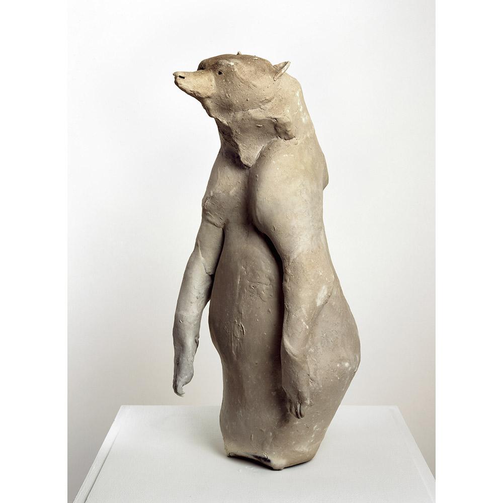 <em>Bear</em>, 2007